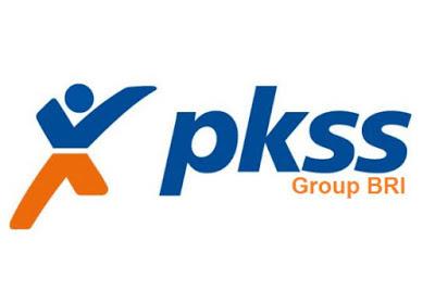 Lowongan PT. PKSS Pekanbaru Oktober 2018