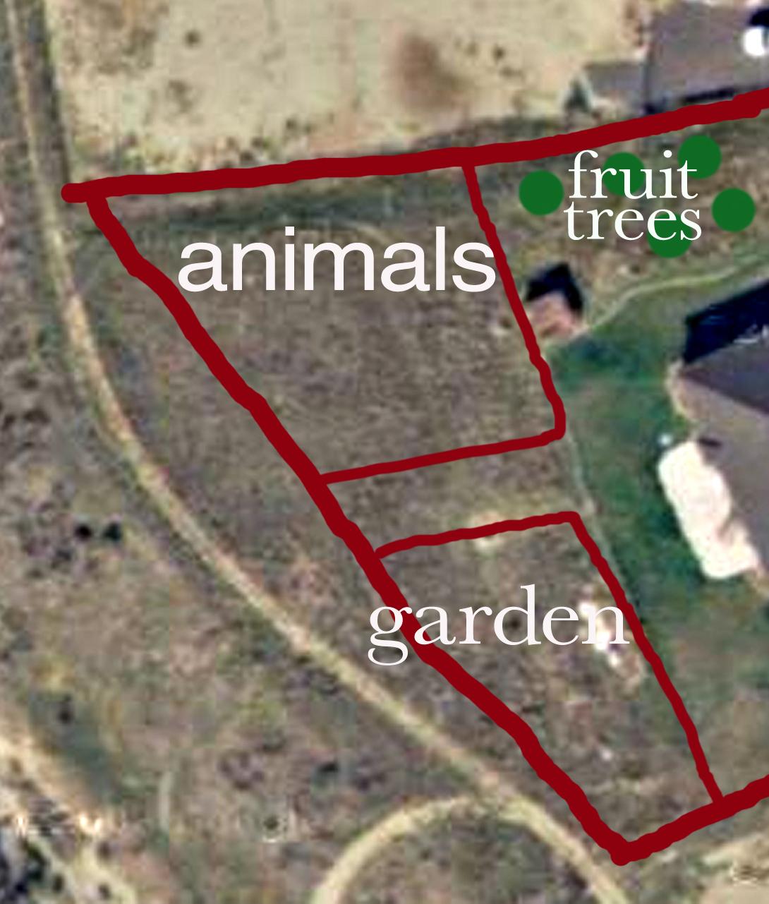 Backyard Farming: February 2011