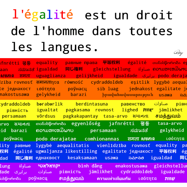 Equality is a human right (in french)