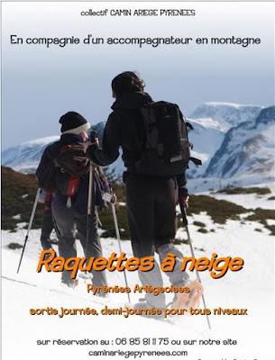 http://www.caminariegepyrenees.com/p/randonnee-raquettes-neige-et-igloo.html