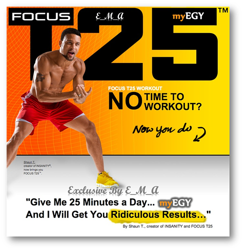 Focus T25 Workout ( Training Videos + PDF ) ~ The Ocean 4 software