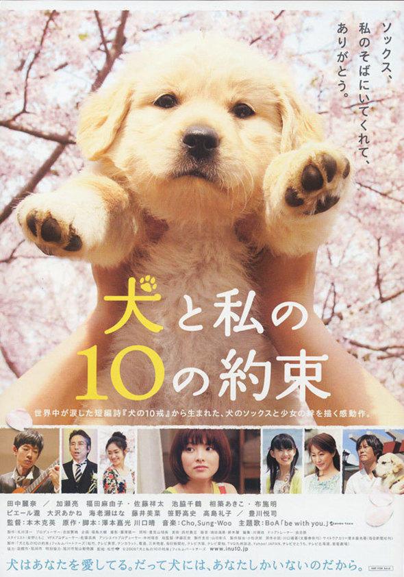 10 Promises To My Dog 10 ข้อสัญญาน้องหมาของฉัน [HD][พากย์ไทย]