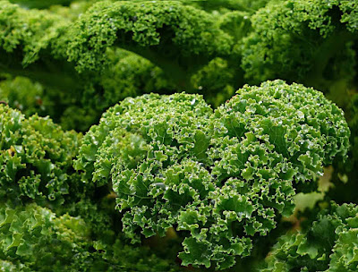 what-are-the-health-benefits-of-kale