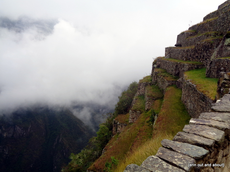 {Erin Out and About} Machu Picchu