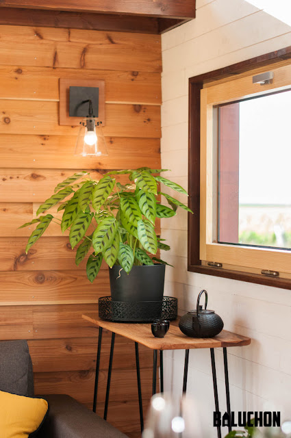 Pampille tiny house - Baluchon