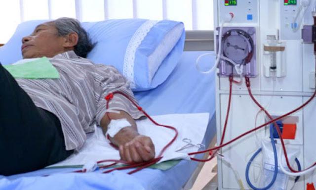 Terbukti Ampuh, Berikut Bahan Alami Untuk Pengganti Cuci Darah