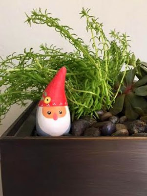 succulent garden with gnome