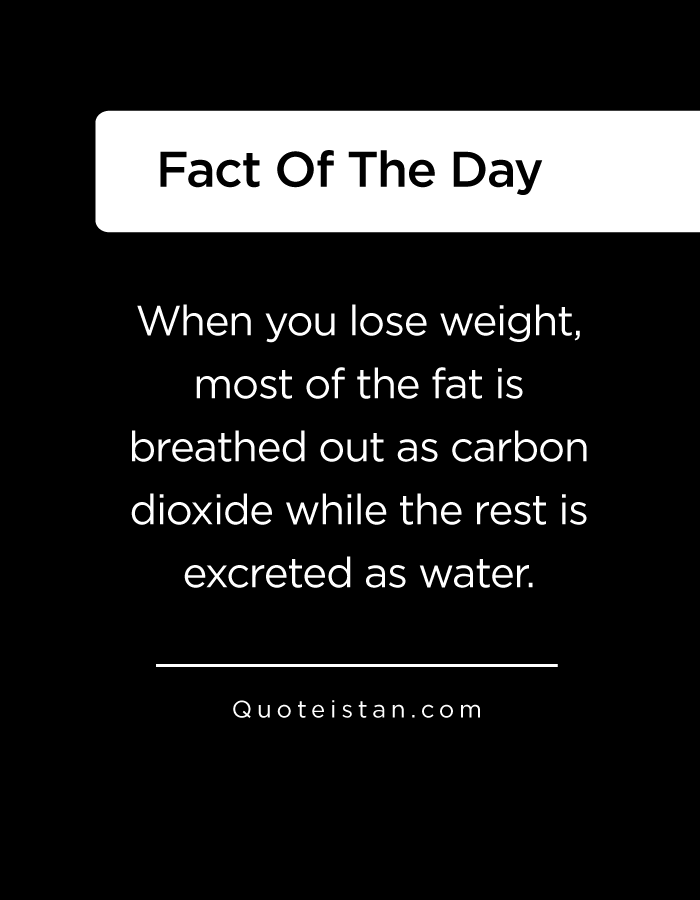 When you lose weight, most of the fat is breathed out as carbon dioxide while the rest is excreted as water.