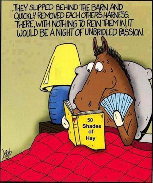 50 shades of hay