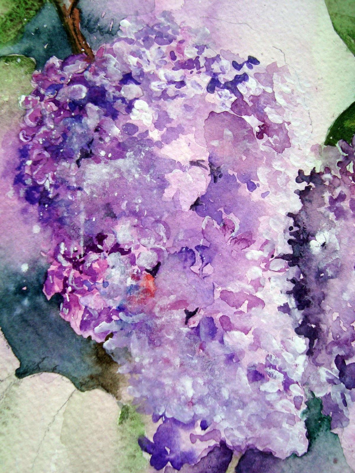 Watercolour Florals: Lilac Blossom