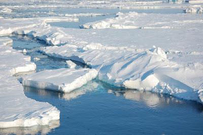 Perubahan Iklim, Penyebab, Dampaknya di Kehidupan