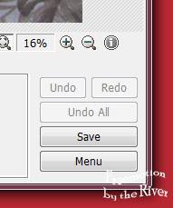 Photoscape Save Undo buttons