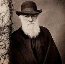 ¿Poesía y arte versus darwinismo?, Francisco Acuyo, Ancile