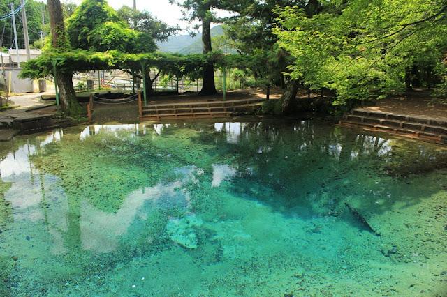 自然が作り出した、山口県一の絶景。秋芳洞とカルスト大地【Yamaguchi】 別府弁天池