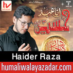 http://www.humaliwalayazadar.com/2017/09/haider-raza-nohay-2018.html
