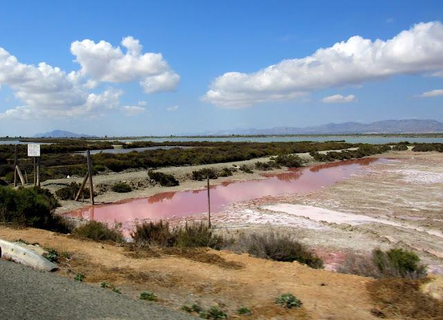 Aguas rosas de las salinas