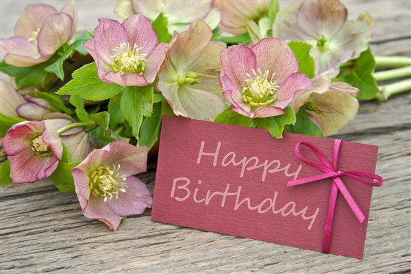 Hanoi Flower Delivery Flowers And Message Card On Birthday