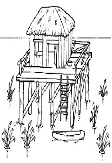 Diversos tipos de moradias-palafita