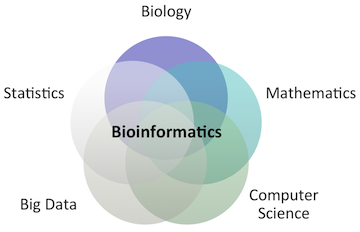 Bioinformatics career guide career guide coding data analysis machine learning and light mathematical modeling are a bioinformaticians bread and butter ever wanted to fight humankinds worst ccuart Choice Image