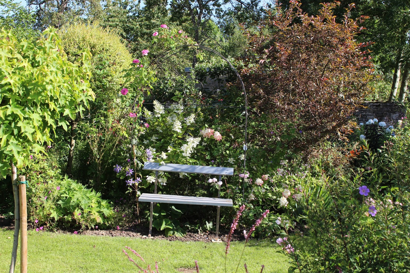 Notre jardin secret le jardin d but ao t for Jardin secret 78