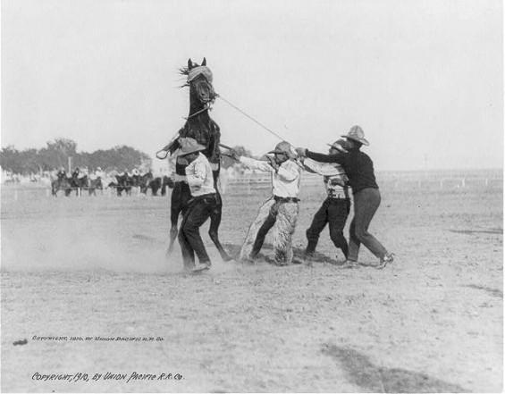 Vintage Photos Of Cowboys Amp Cowgirls Vintage Everyday