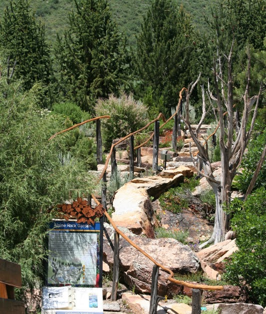 16 Things To Do In Vail Beyond Skiing: Colorado Lifestyle: Betty Ford Alpine Garden