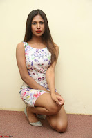 Nishi Ganda stunning cute in Flower Print short dress at Tick Tack Movie Press Meet March 2017 090.JPG