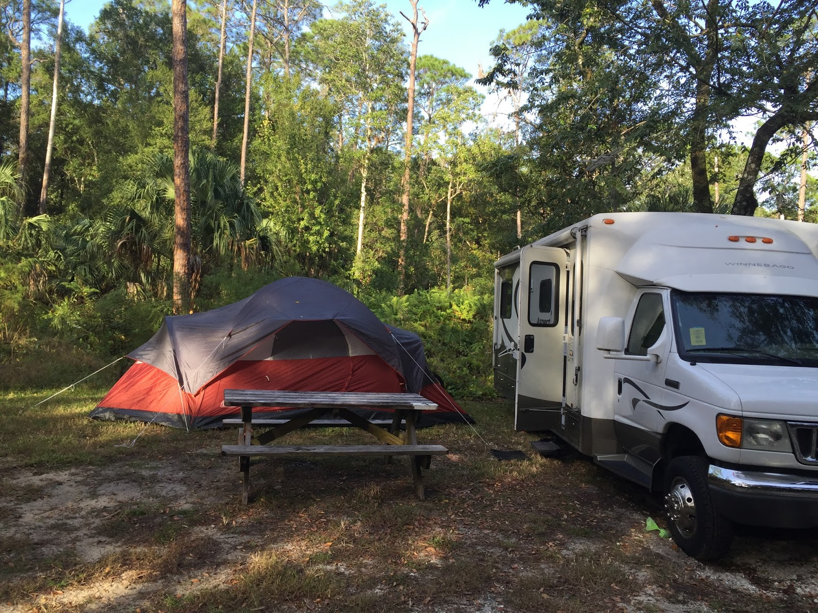 camping at highlands hammock state park in sebring florida our outdoor travel stories  camping at highlands hammock state      rh   ouroutdoorstories