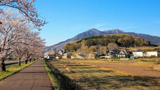 土浦駅からつくばりんりんロードで岩瀬駅へ。一般道と恋瀬川サイクリングコースを通って霞ヶ浦まで行き石岡駅まで走るサイクリングコース
