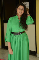 Geethanjali in Green Dress at Mixture Potlam Movie Pressmeet March 2017 065.JPG