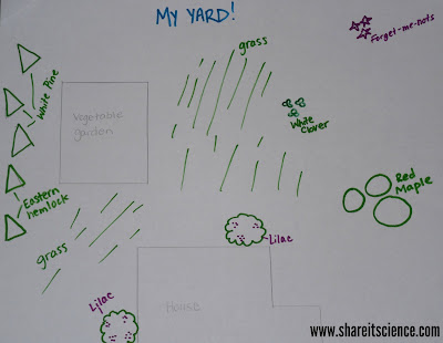Yard Map kids outdoor STEM activity www.shareitscience.com
