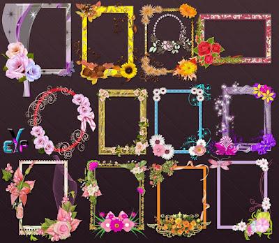 Decoration blossom frames png