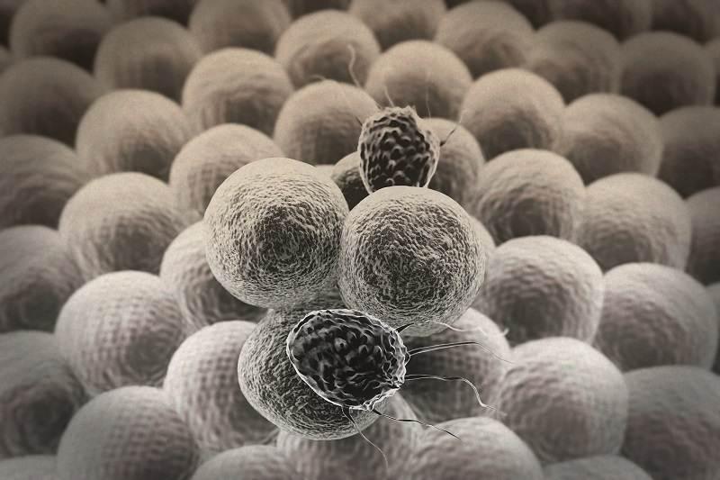 Baixa contagem de linfócitos (linfocitopenia)