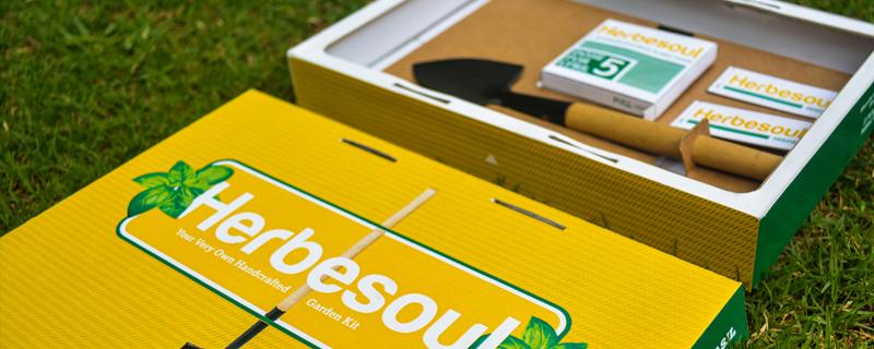 Herbesoul, kit de jardinería
