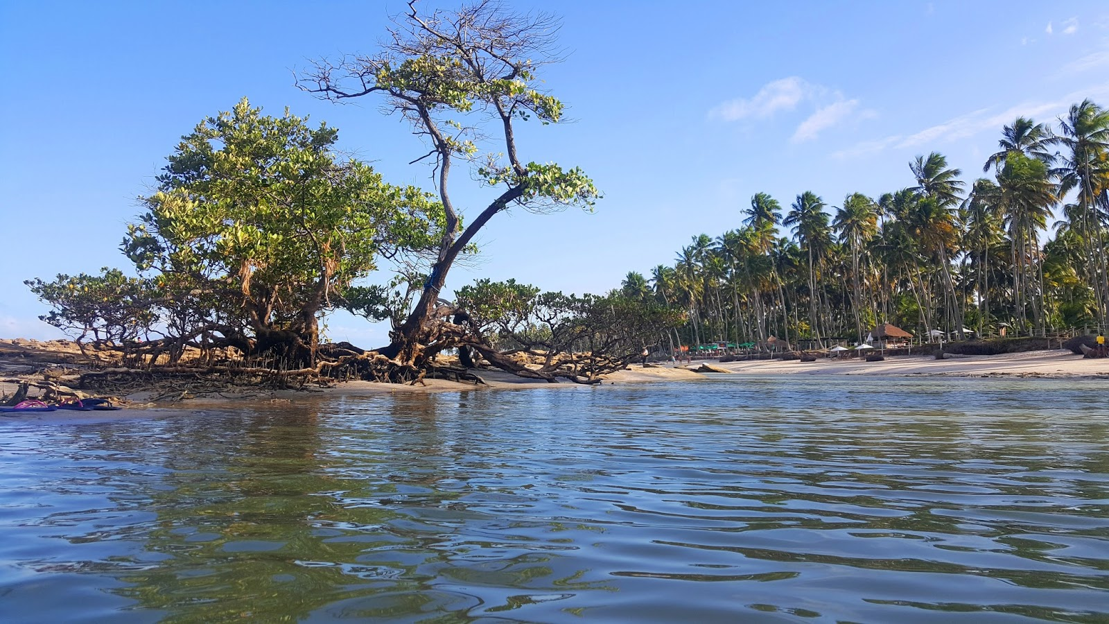Praia de Carneiros em Tamandaré, Pernambuco