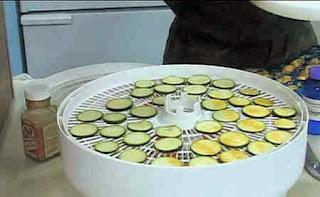 Αποξήρανση & κονσερβοποίηση λαχανικών φρούτων