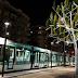 Pohon Bercahaya, Pohon ini Dapat Menerangi Kota Anda, Mau Nanam Juga?