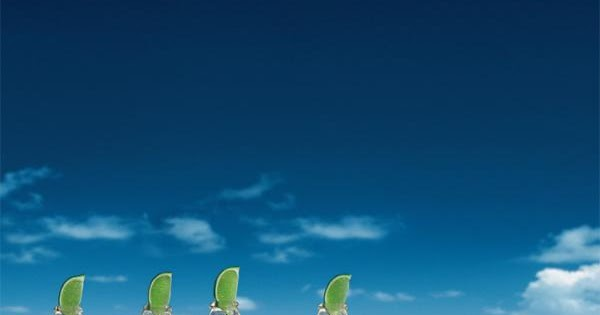 Classical Conditioning Example - Corona Ads | HADM 3470 6470