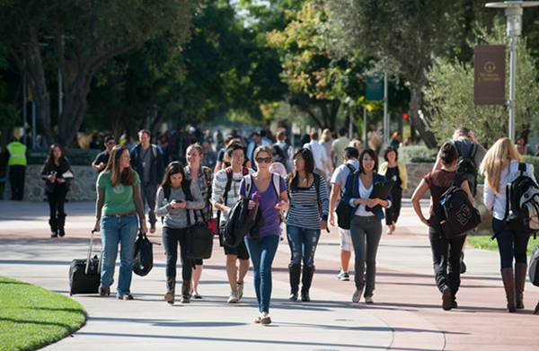 University Of Phoenix: Best University For Your Career