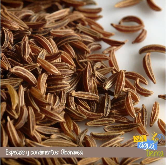 Alcaravea, alcaraveta o comino de prado - Uso de las especias en cocina