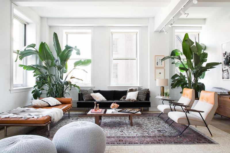 Twelve Stylish Indoor Plant Ideas Apartment Number 4