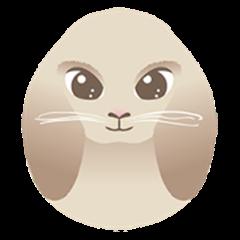 Sensitive Rabbit