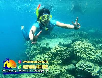 Ke Pulau Karimun Jawa Awal November 2018