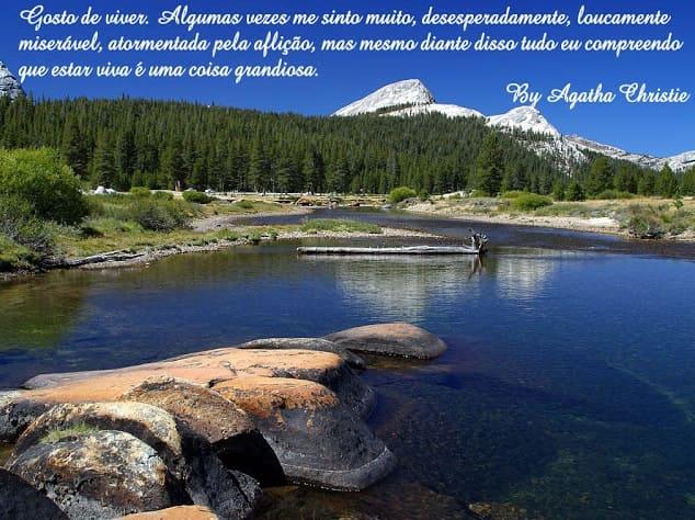Foto de Paisagem com rio, floresta e montanhas