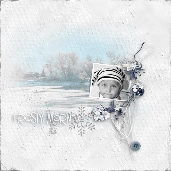 frosty morning © sylvia • sro 2019 • frosty morning by ditaB designs