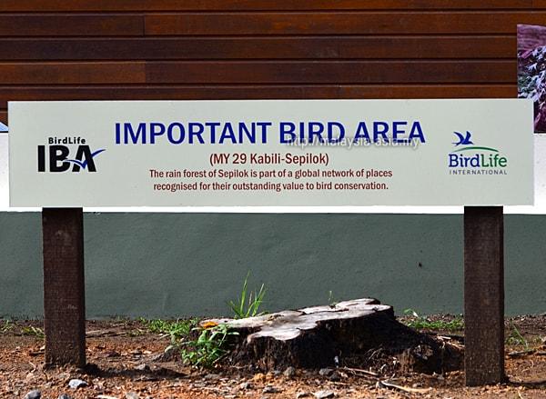 Sabah IBA Important Bird Area