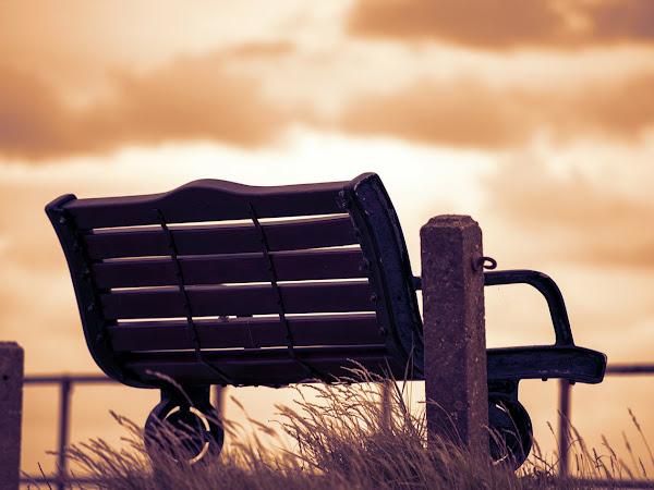 Life #6 | ❄ Checklist voor introversie ❄