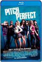 Pitch Perfect (2012) HD 720p Subtitulados