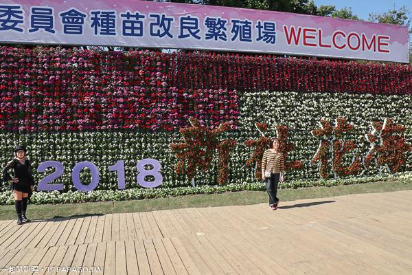 《台中.新社》2018新社花海12/1-12/16|大地畫布|可食地景|客家文化意象|樂遊台三線