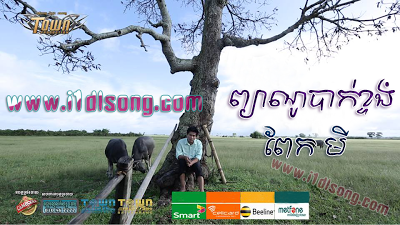 Town vcd vol 20 dating 4